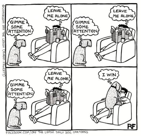 Pilt: koomiks, sülleroniv koer