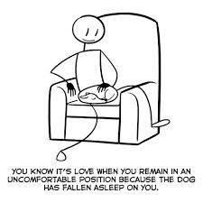 püsi ebamugavas asendis, kui koer sinu süles tudub