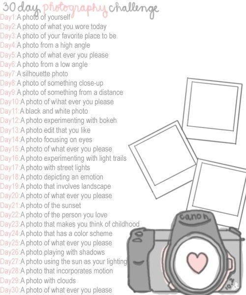 30dayphotographychallenge