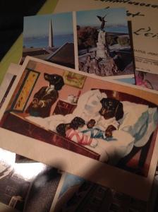 Koertega postkaart