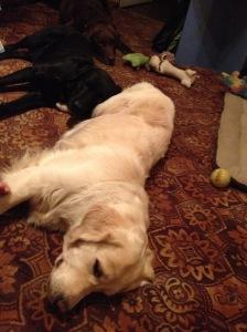 Kolm Koonu ja mänguasjad siruli